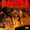 Pantera - Great Southern Treadkill (EXPLICIT LYRICS) (CD) - image 4 of 4
