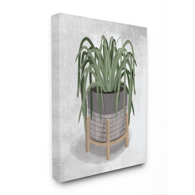Stupell Industries Friendly Spider Plant Grey Green Painting