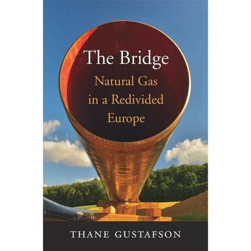 The Bridge - by  Thane Gustafson (Hardcover) - image 1 of 1