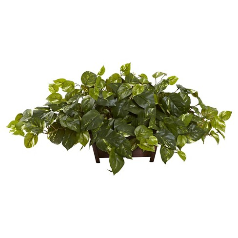 Nearly Natural Pothos with Rectangle Decorative Planter - image 1 of 1