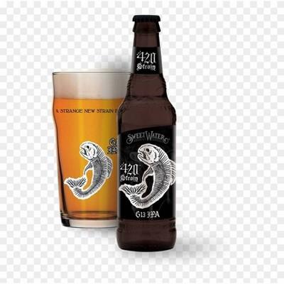 SweetWater G13 IPA Beer - 12pk/12 fl oz Bottles