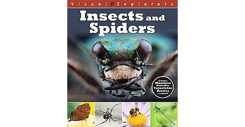 Insects and Spiders (Paperback) - image 1 of 1