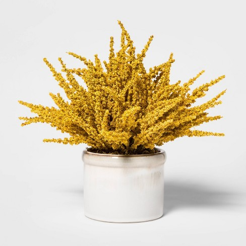 "11"" x 10"" Artificial Goldenrod Arrangement in Ceramic Pot Yellow/White - Threshold™ - image 1 of 4"
