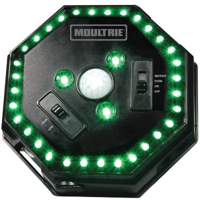 Moultrie MFA-12651 Motion-Activated LED Hog Feeder Light with 30-Foot Radius