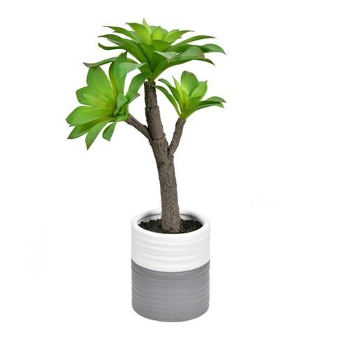 """Vickerman 15"""" Succulent,  Ceramic Pot - image 1 of 2"""