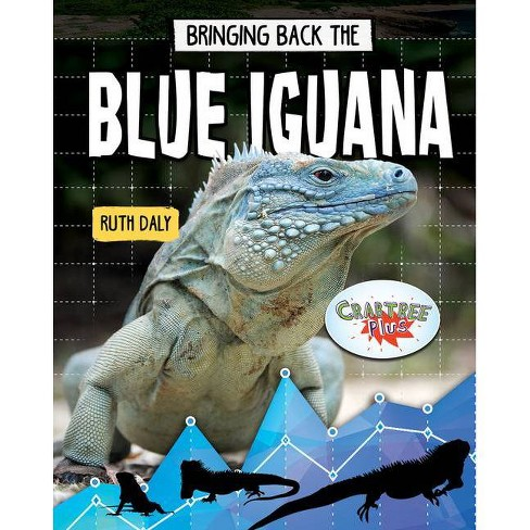 Bringing Back the Blue Iguana - (Animals Back from the Brink) by  Ruth Daly (Paperback) - image 1 of 1