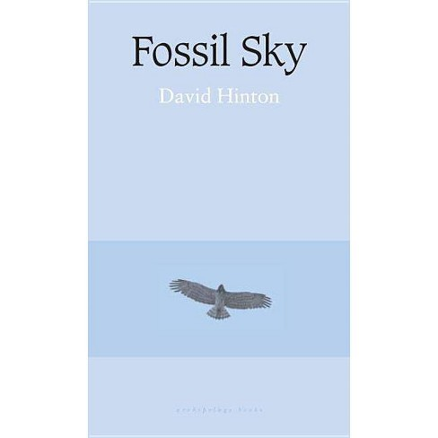 Fossil Sky - by  David Hinton (Paperback) - image 1 of 1