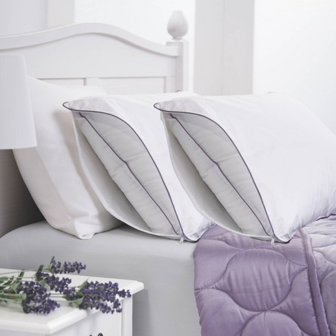 2pk Lavender Infused Cotton Pillow Protector - Allied Home - image 1 of 4