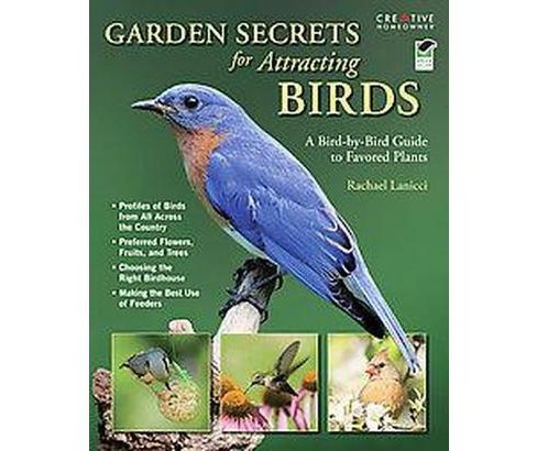 Garden Secrets for Attracting Birds : A Bird-by-Bird Guide to Favored Plants (Paperback) (Rachael - image 1 of 1