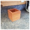 Succulent Planter Square Western Clear Oil Finish - Red Cedar - Gronomics - image 2 of 2
