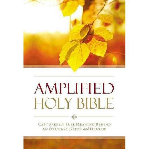 Amplified Outreach Bible, Paperback - by  Zondervan - image 1 of 1