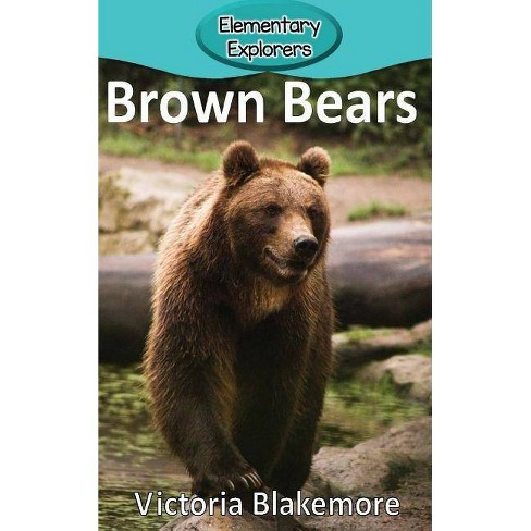 Brown Bears - (Elementary Explorers) by  Victoria Blakemore (Hardcover) - image 1 of 1
