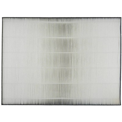 Sharp FP-A80UW HEPA Filter Replacement