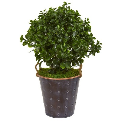 2.5' Peperomia Artificial Plant in Metal Planter - Nearly Natural