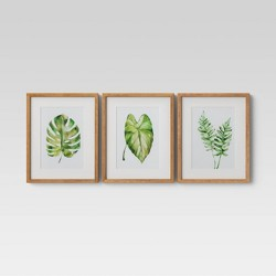 "Set of 3 16""x20"" Leaf Framed Wall Print - Threshold™"