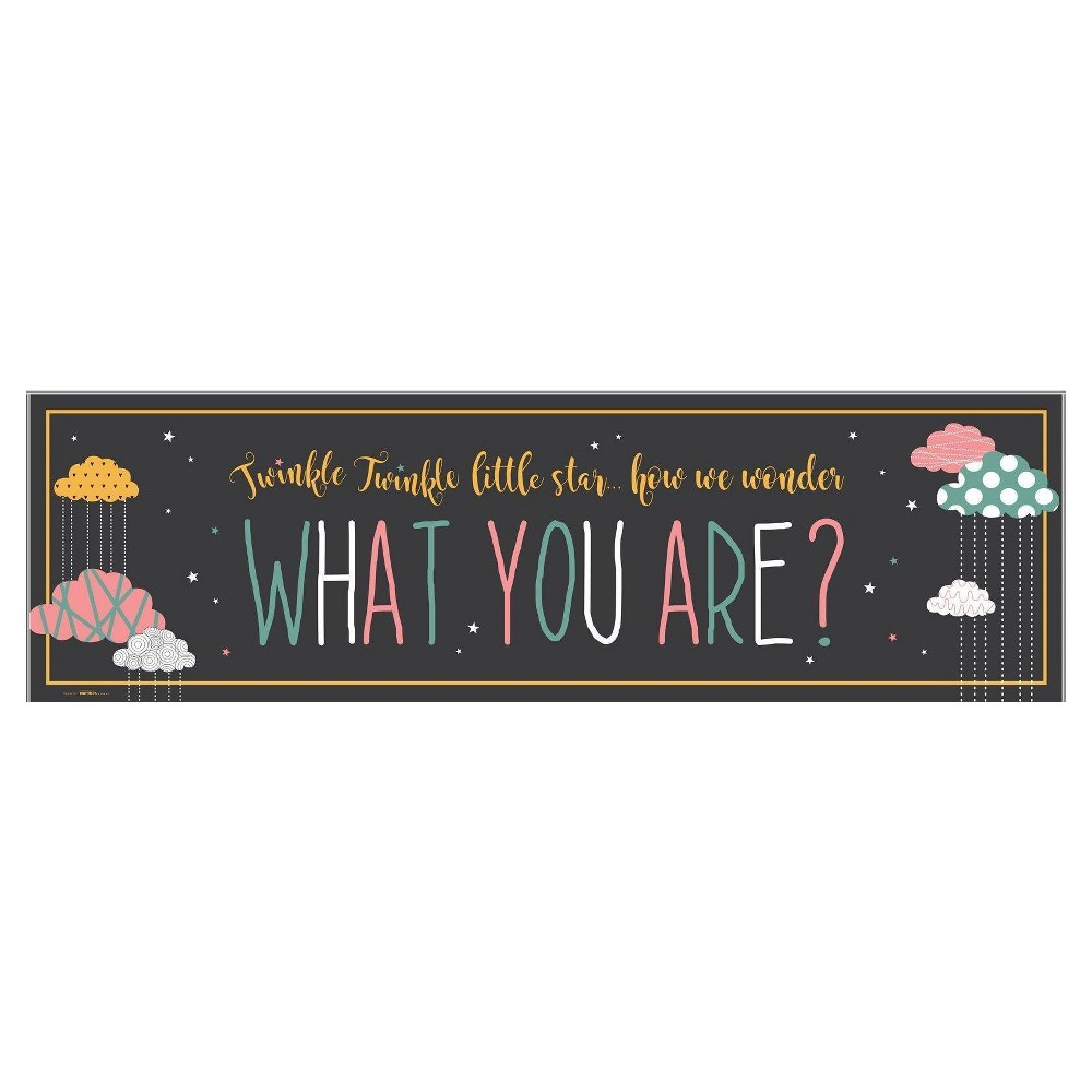 Twinkle Twinkle How We Wonder Party Banner - Standard, Multi-Colored
