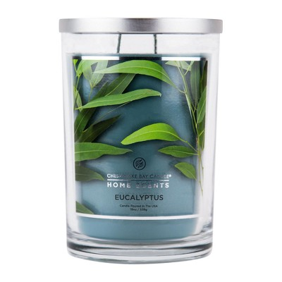 Jar Candle Eucalyptus 19oz - Chesapeake Bay Candles® Home Scents