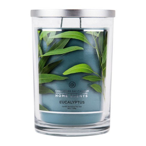 Jar Candle Eucalyptus 19oz - Chesapeake Bay Candles® Home Scents - image 1 of 1