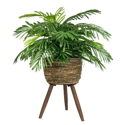 "30"" x 18"" Artificial Phoenix Palm Plant in Basket Stand - LCG Florals"