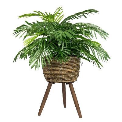 "30"" x 18"" Artificial Phoenix Palm Plant in Basket Stand - LCG Florals"