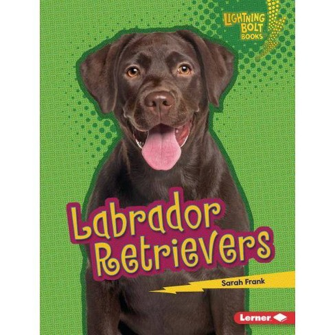 Labrador Retrievers - (Lightning Bolt Books (R) -- Who's a Good Dog?) by  Sarah Frank (Hardcover) - image 1 of 1