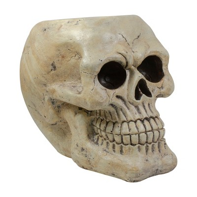 "Northlight 11"" Ivory and Black Halloween Skull Tabletop Decoration"