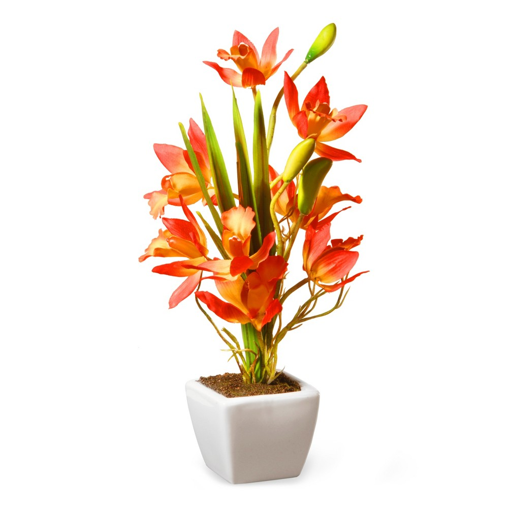 Image of 13 Yellow & Orange Orchid Flowers - National Tree Company, Pink