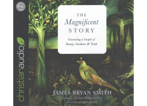 Magnificent Story : Uncovering a Gospel of Beauty, Goodness & Truth (Unabridged) (CD/Spoken Word) (James - image 1 of 1