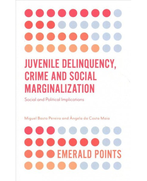 Juvenile Delinquency, Crime and Social Marginalization : Social and Political Implications (Paperback) - image 1 of 1