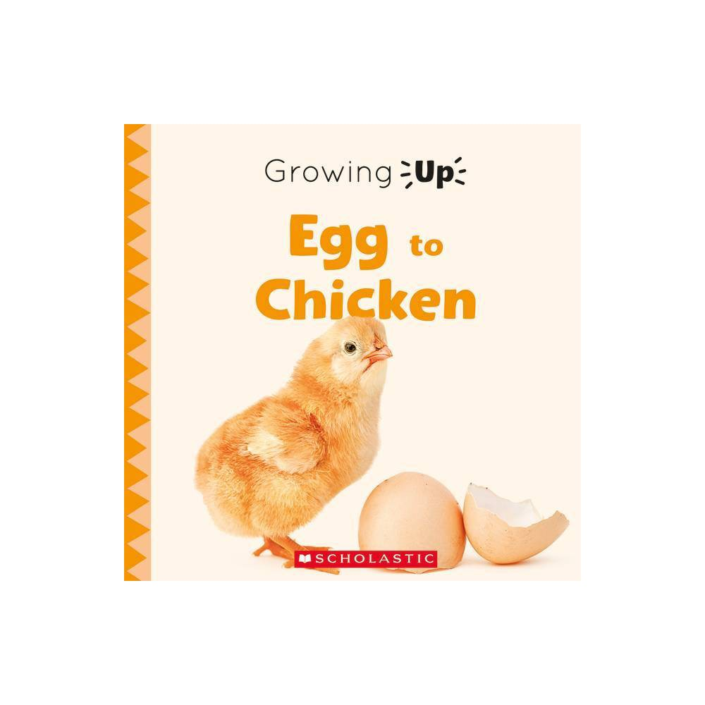 Egg To Chicken Growing Up Paperback Explore The Life Cycle By Jodie Shepherd