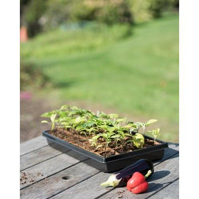 """2"""" Square Biodegradable Pots and Tray Set - Gardener's Supply Company"""
