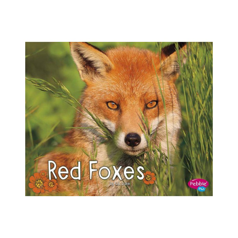 Red Foxes Woodland Wildlife By G G Lake Paperback