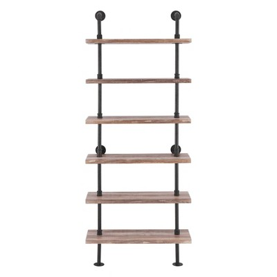 Modern Industrial 6-Tier Iron Pipe wall Mount Ladder Shelf Distressed Wood - Danya B.