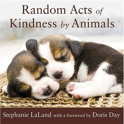 Random Acts of Kindness by Animals - by  Stephanie Laland (Paperback) - image 1 of 1