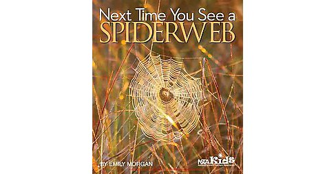 Next Time You See a Spiderweb (Reissue) (Paperback) (Emily Morgan) - image 1 of 1