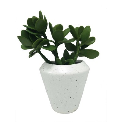 Large Hanging Succulents Wall Sculpture Gray - Project 62™