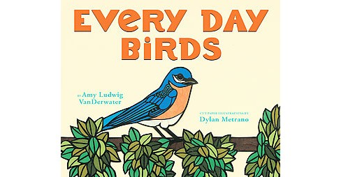 Every Day Birds (School And Library) (Amy Ludwig Vanderwater) - image 1 of 1
