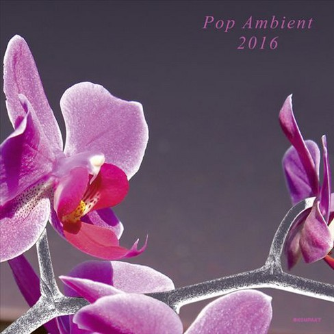 Various - Pop ambient 2016 (Vinyl) - image 1 of 1