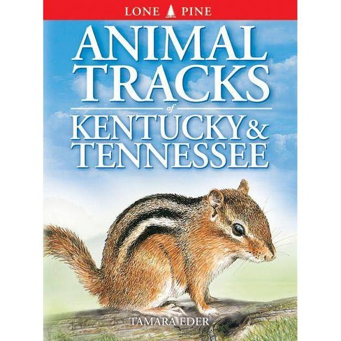 Animal Tracks of Kentucky and Tennessee - by  Tamara Eder & Edwin Arnfield (Paperback) - image 1 of 1