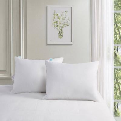 Standard 2pk Surround Feather & Down Bed Pillow - Martha Stewart