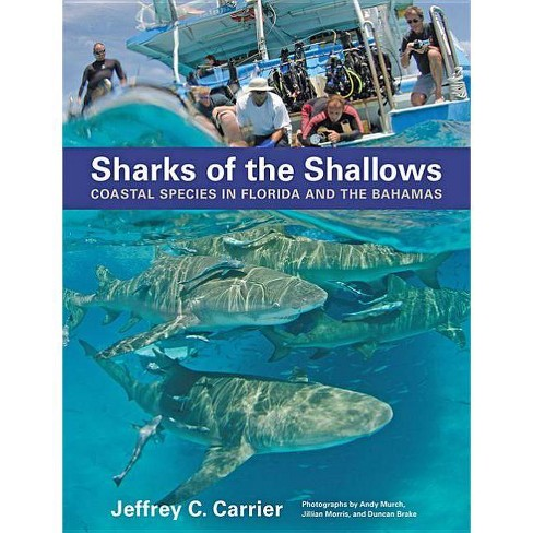 Sharks of the Shallows - by  Jeffrey C Carrier (Hardcover) - image 1 of 1