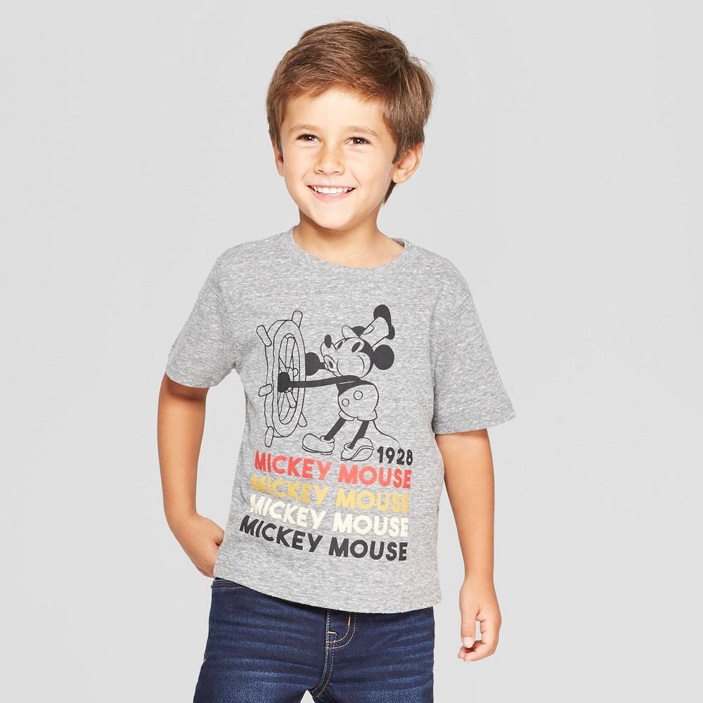 Toddler Boys' Disney Short Sleeve T-Shirt - Gray 12M