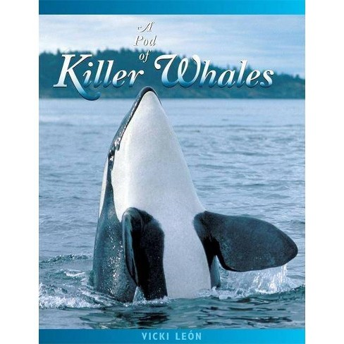 A Pod of Killer Whales - (Jean-Michel Cousteau Presents) 2 Edition by  Vicki Leon (Paperback) - image 1 of 1