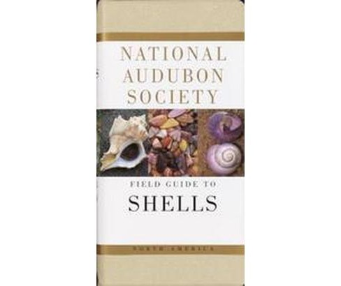 National Audubon Society Field Guide to North American Seashells (Reprint) (Paperback) (Harald A. - image 1 of 1