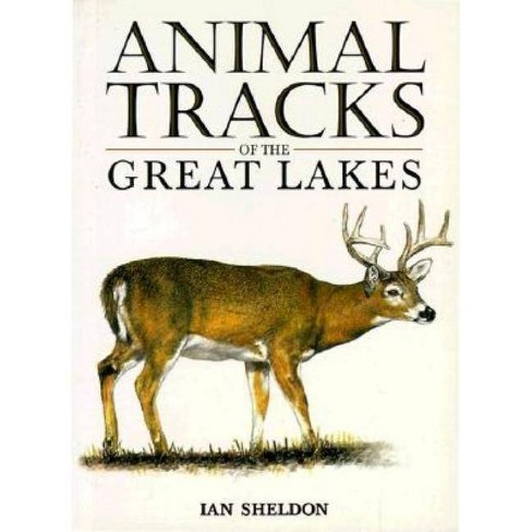 Animal Tracks of the Great Lakes - by  Ian Sheldon (Paperback) - image 1 of 1