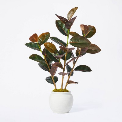 """35"""" Artificial Rubber Tree - Threshold™ designed with Studio McGee"""