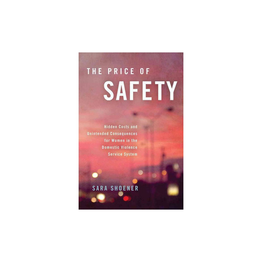 Price of Safety : Hidden Costs and Unintended Consequences for Women in the Domestic Violence Service