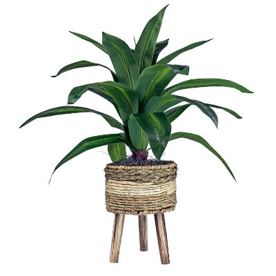 """24"""" x 24"""" Artificial Dracaena Plant in Basket Stand - LCG Florals"""