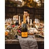 Veuve Clicquot Yellow Label Brut Champagne with Ice Jacket - 750ml Bottle - image 4 of 4