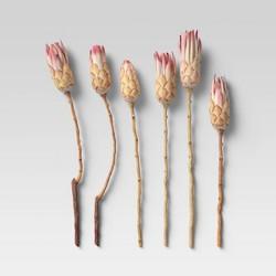 6pc Dried Compactca Flower Bundle Pink - Threshold™